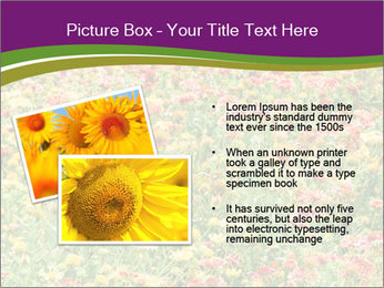 Spring Blossom PowerPoint Template - Slide 20