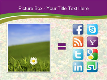 Spring Blossom PowerPoint Template - Slide 21