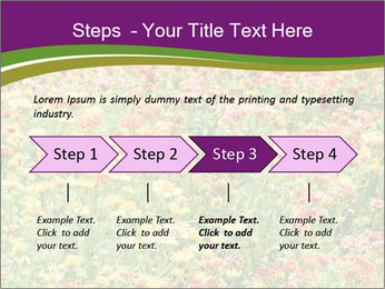 Spring Blossom PowerPoint Template - Slide 4