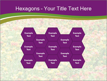 Spring Blossom PowerPoint Template - Slide 44