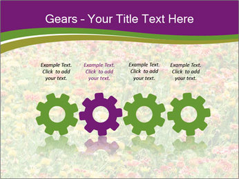 Spring Blossom PowerPoint Template - Slide 48