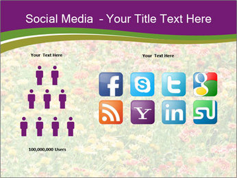 Spring Blossom PowerPoint Template - Slide 5