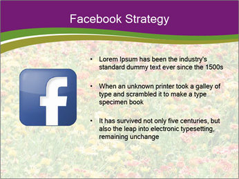Spring Blossom PowerPoint Template - Slide 6