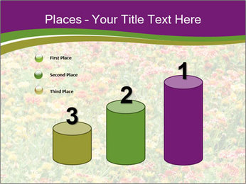 Spring Blossom PowerPoint Template - Slide 65