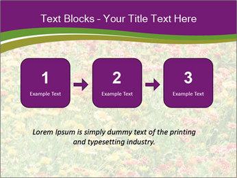 Spring Blossom PowerPoint Template - Slide 71