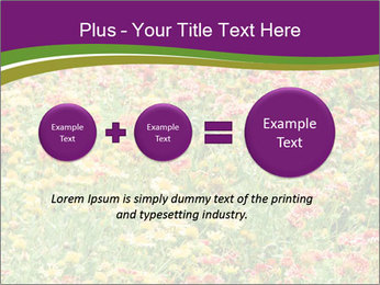 Spring Blossom PowerPoint Template - Slide 75