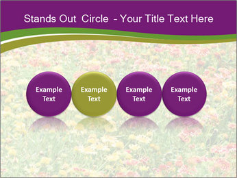 Spring Blossom PowerPoint Template - Slide 76