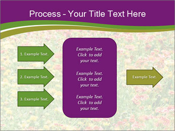 Spring Blossom PowerPoint Template - Slide 85
