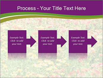 Spring Blossom PowerPoint Template - Slide 88