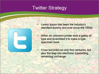 Spring Blossom PowerPoint Template - Slide 9