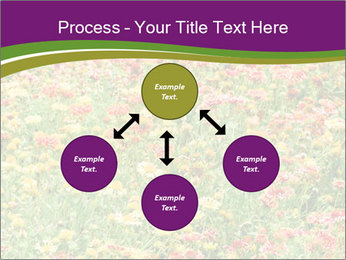 Spring Blossom PowerPoint Template - Slide 91