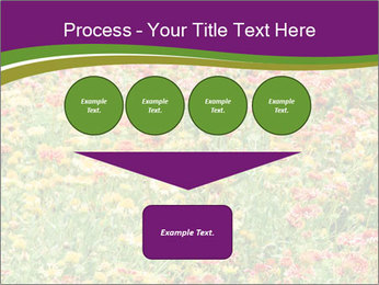 Spring Blossom PowerPoint Template - Slide 93