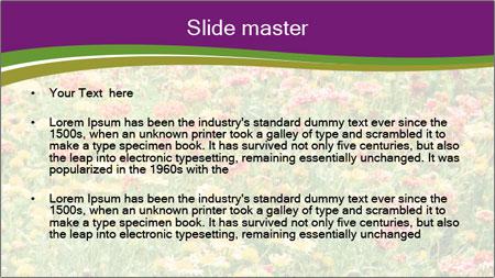 Spring Blossom PowerPoint Template - Slide 2