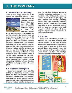 0000090379 Word Template - Page 3