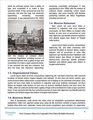 0000090379 Word Template - Page 4