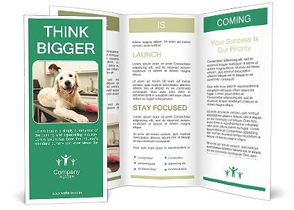 0000090389 Brochure Template