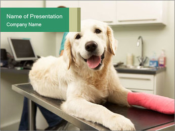 Vet Treatment PowerPoint Template - Slide 1