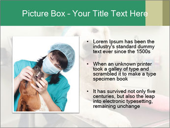 Vet Treatment PowerPoint Template - Slide 13