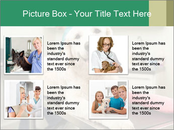 Vet Treatment PowerPoint Template - Slide 14