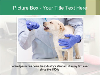 Vet Treatment PowerPoint Template - Slide 15