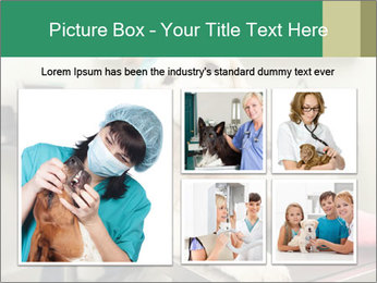 Vet Treatment PowerPoint Template - Slide 19
