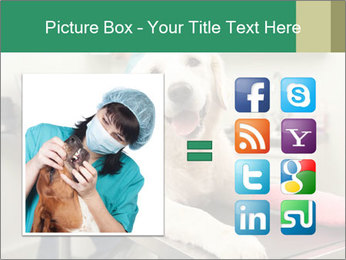 Vet Treatment PowerPoint Template - Slide 21