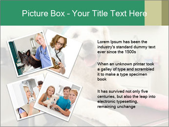 Vet Treatment PowerPoint Template - Slide 23