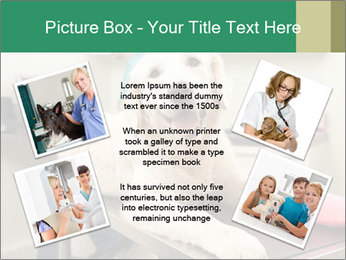 Vet Treatment PowerPoint Template - Slide 24