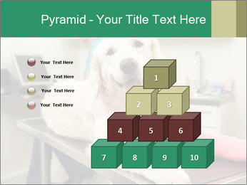 Vet Treatment PowerPoint Template - Slide 31