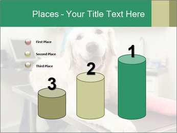 Vet Treatment PowerPoint Template - Slide 65