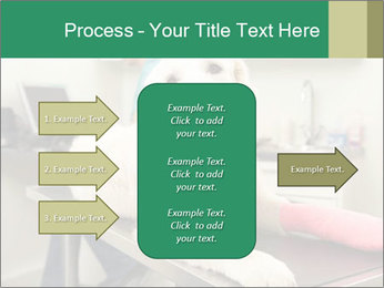 Vet Treatment PowerPoint Template - Slide 85