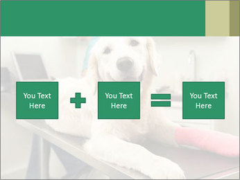 Vet Treatment PowerPoint Template - Slide 95