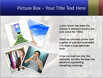 Beautiful girl in the fall nature PowerPoint Template - Slide 23