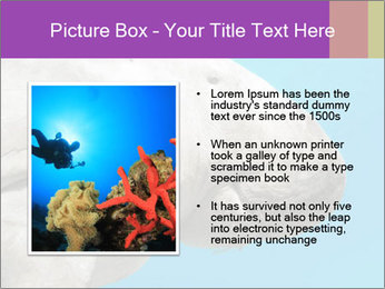 The sea cow PowerPoint Template - Slide 13