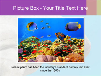 The sea cow PowerPoint Template - Slide 15