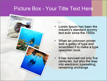 The sea cow PowerPoint Template - Slide 17