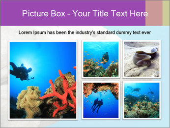 The sea cow PowerPoint Template - Slide 19
