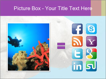 The sea cow PowerPoint Template - Slide 21