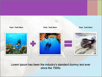 The sea cow PowerPoint Template - Slide 22