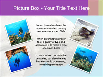 The sea cow PowerPoint Template - Slide 24