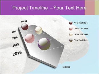 The sea cow PowerPoint Template - Slide 26