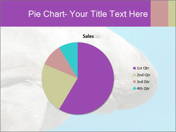 The sea cow PowerPoint Template - Slide 36