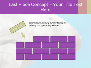 The sea cow PowerPoint Template - Slide 46