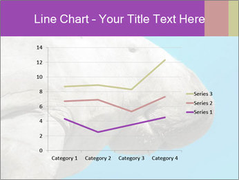 The sea cow PowerPoint Template - Slide 54