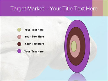 The sea cow PowerPoint Template - Slide 84