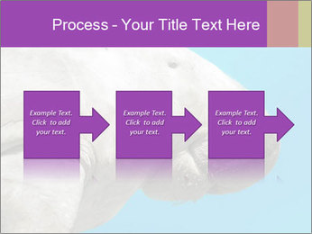The sea cow PowerPoint Template - Slide 88