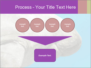 The sea cow PowerPoint Template - Slide 93
