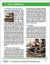 0000090407 Word Template - Page 3