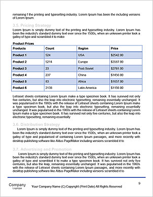 0000090410 Word Template - Page 9