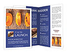0000090412 Brochure Template